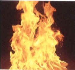 fuego.2